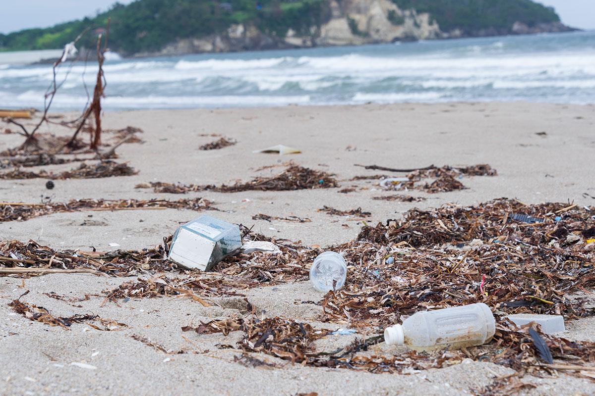 知っていますか?「海洋プラスチックごみ問題」