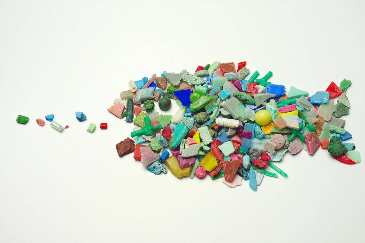マイクロプラスチックは有害物質の運び屋!?